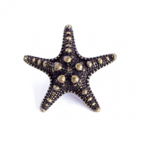 Emenee OR421 Sea Star Cabinet Knob