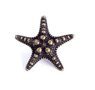 Emenee OR421 Sea Star Cabinet Knob in Antique Matte Copper (ACO)
