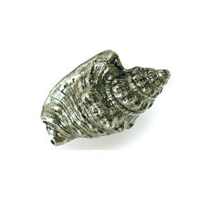 Emenee OR426 Hawk Wing Conch Cabinet Knob in Antique Bright Silver (ABS)