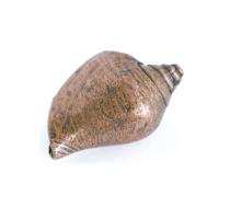 Emenee OR427 Voluntidae Conch Cabinet Knob in Antique Matte Copper (ACO)